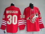 Hockey Jerseys phoenix coyotes 30# bryzgalov red